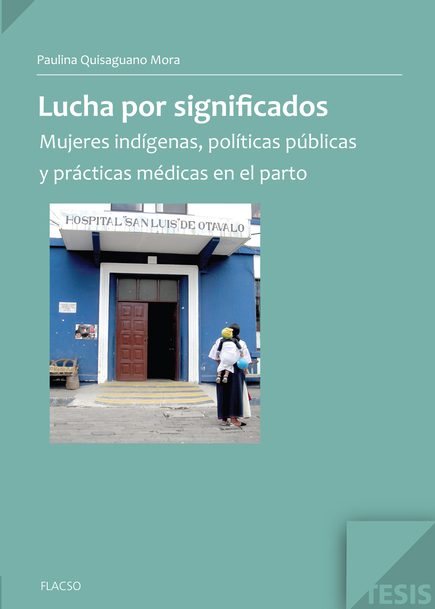 Lucha por significados. Mujeres indígenas, políticas públicas y prácticas médicas en el parto
