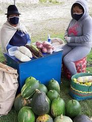 Foro Los cuidados del cuerpo y territorio en el sector rural en tiempos del COVID-19