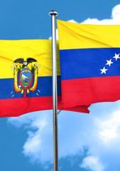 Coloquio Política exterior ecuatoriana y crisis migratoria venezolana