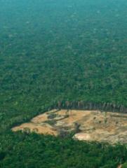Seminario Violencia extractivista y contestaciones territoriales en la urbanización (pan)amazónica